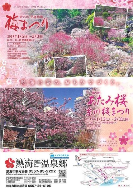 2019あたみ桜糸川桜まつりチラシ.jpg