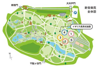 グリーンチャレンジデー会場図.jpg